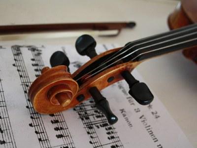 Principal 2nd violin
