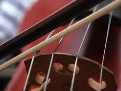 Section principal cello* © Nancy Horowitz